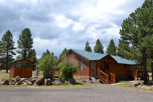 Cabin number 8